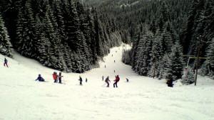 partii de schi cluj