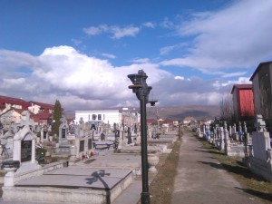 cimitir, dino, catei 001