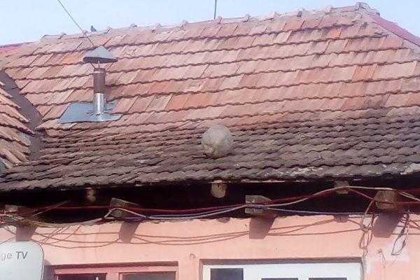 Orange TV, bostan pe acoperis, dar nu si un tomberon!